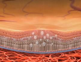 Vitrectomy for Macular Oedema