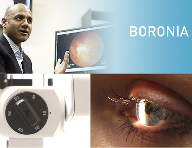 boronia-banner-reduced